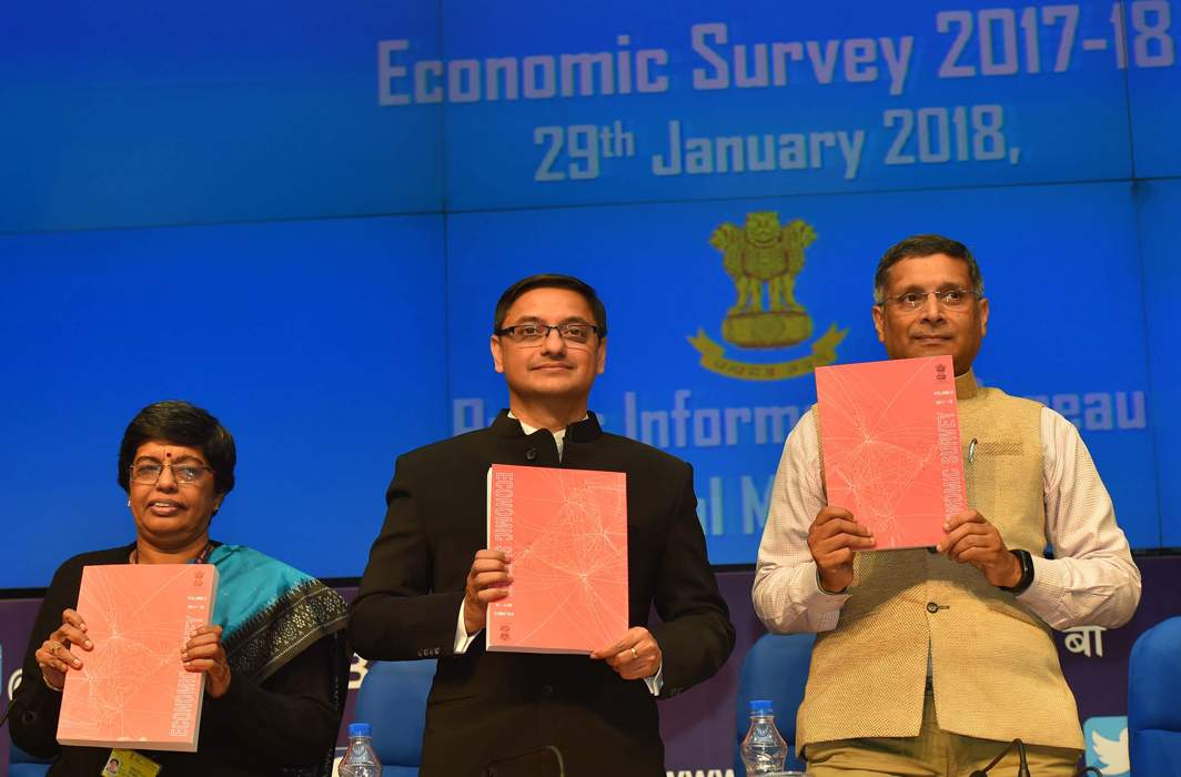Economic Survey seems to have its head in the sand under storm clouds
