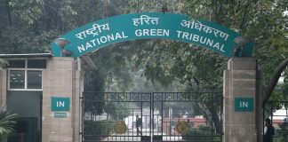 Poultry farm to stay shut, NGT says sell of birds
