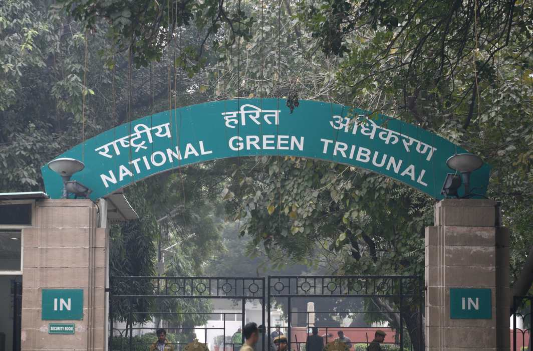 NGT directs Haryana govt, CPCB to file statement on the report highlighting ammonia content