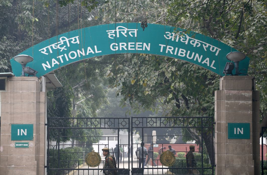NGT seeks status report from UP on Illegal slaughterhouses in Bulandshahr