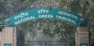 NGT takes up the cause of sudden blindness in blue sheep