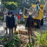 A demolition drive to remove encroachments in Sector 19, Chandigarh/Photo: Twitter/ZeePunjab