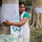 Delhi High Court Adjourns PIL Against Tree Felling to July