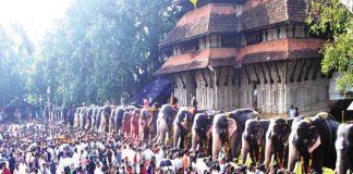 Anayootu (Elephant Feeding) festival in Sri Vadakkum Nadha Temple, in Thrissur/Photo: UNI