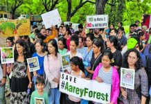 Bombay HC to hear AAREY Petitions from 17th September