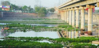 The NGT committee wants anyone destroying water bodies to be punished