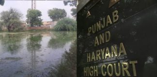punjab-and-haryana-high-court