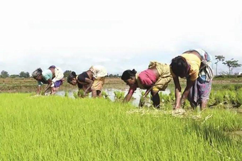 Farm Services Bill