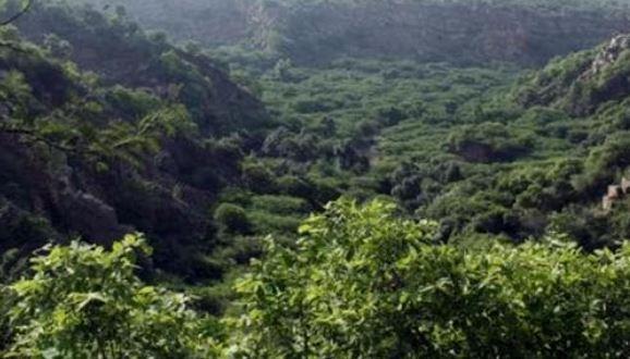 Aravalli Forest land