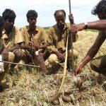 Irulas in a village in Tamil Nadu
