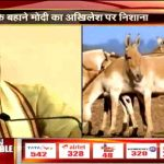 New low in political debate, PM Modi responds to CM Akhilesh's donkey remark