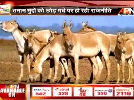 Proud to take inspiration from Donkey: PM Modi