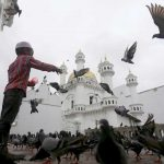 DAILY ZAKAT: A Muslim boy feeds pigeons after Friday prayers during the holy month of Ramzan at a mosque in Colombo, Sri Lanka, UNI