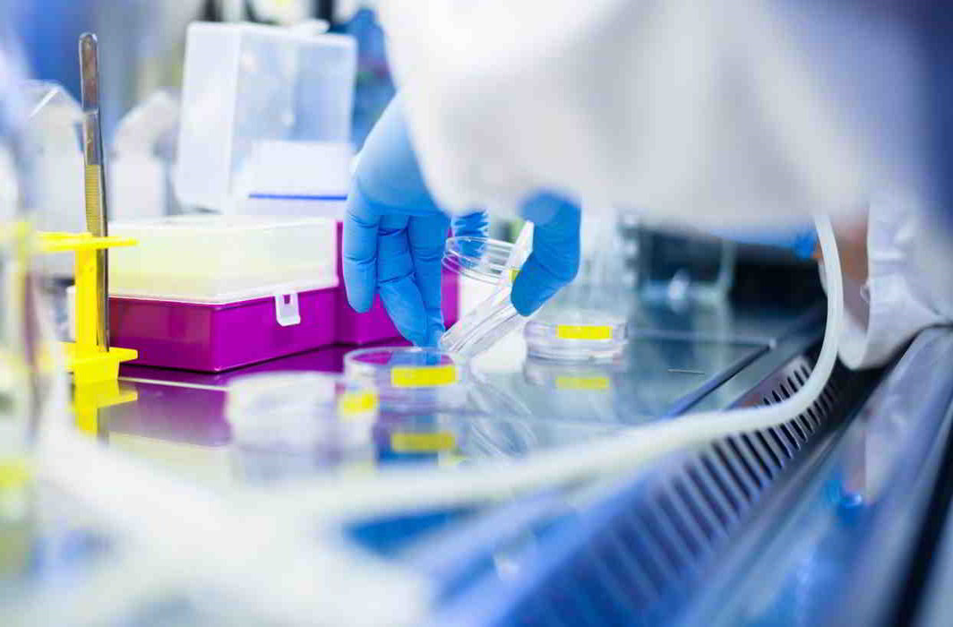 Indian scientists testing dendritic therapy against cervix cancer