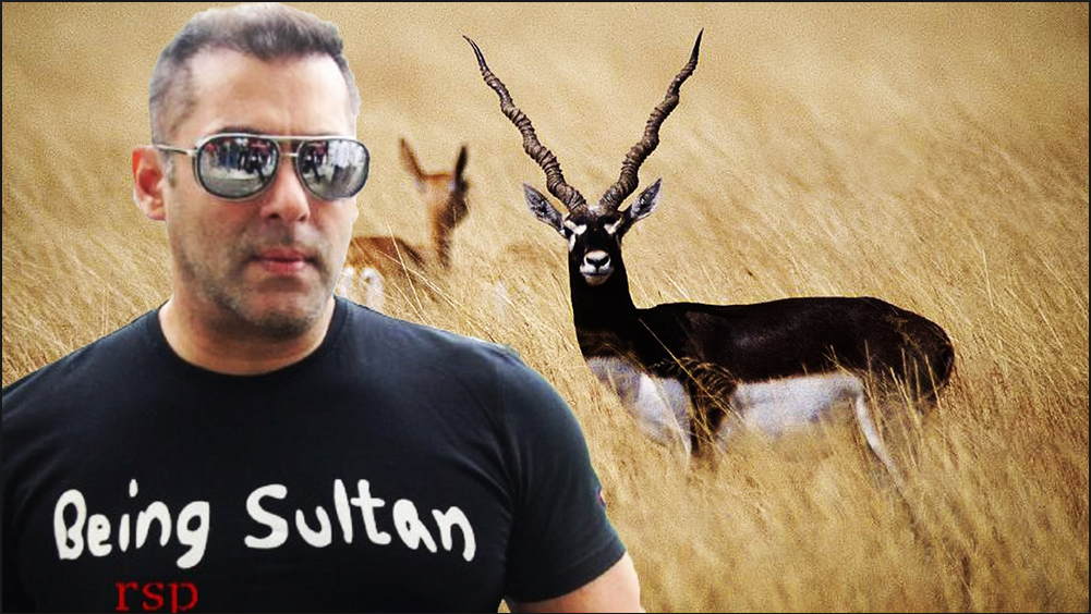 Salman Khan gets 5-year jail in blackbuck poaching case; others acquitted