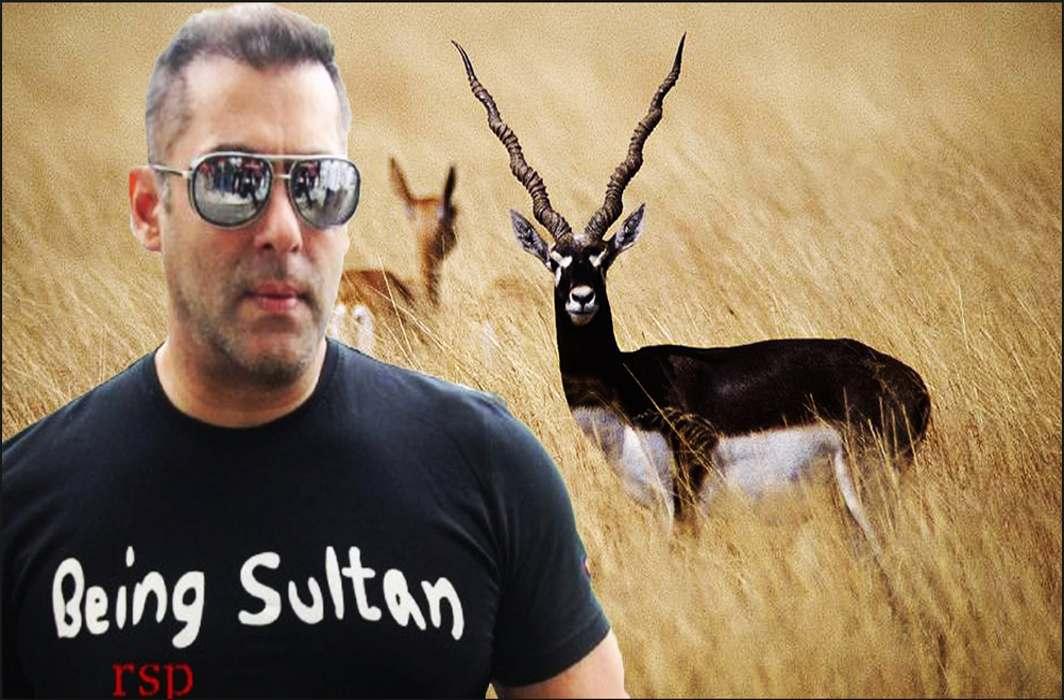Jodhpur sessions court to pass order on Salman's bail plea