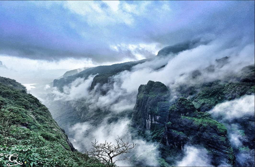 Western Ghats biodiversity is a significant source of moisture for monsoon