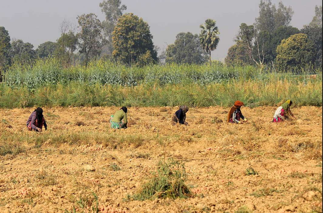PM Modi's promise of doubling farmers' income needs a reality check