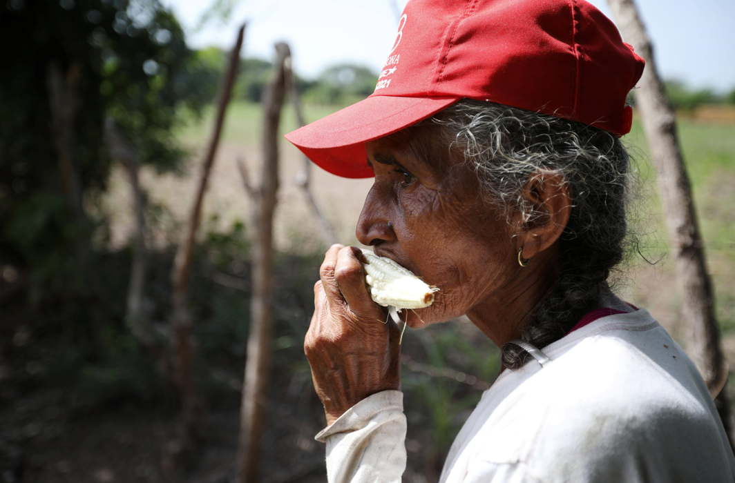 Maria Jesus Lopez bites a corn ear in a drought-affected farm near the town of San Marcos Lempa, El Salvador, Reuters/UNI