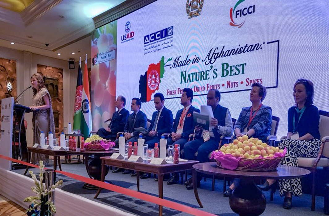 Afghan traders ink $68m deals in Delhi's trade event