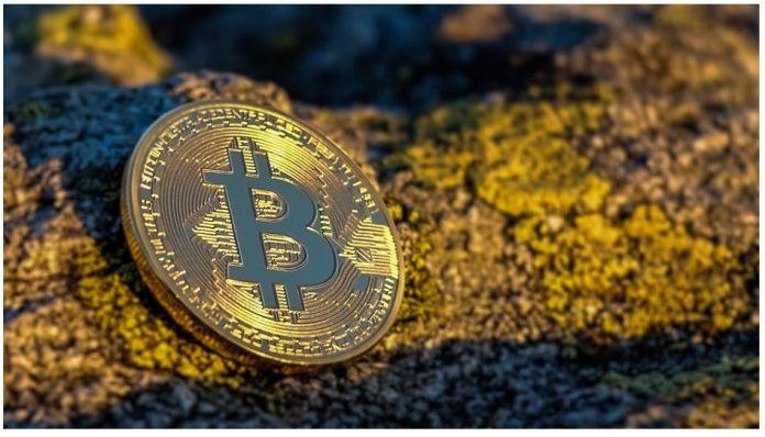 crypto economies