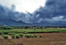 fear-of-low-monsoon-signs-of-drought