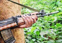 Why are Naxalites successful?