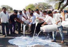 Maharashtra farmers on strike