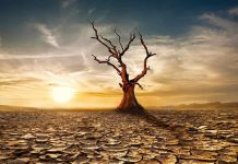 Due to climate change and increasing global warming there is a possibility of a threat to the future of human life.
