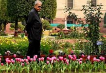President Pranab Mukherjee's farewell ceremony today