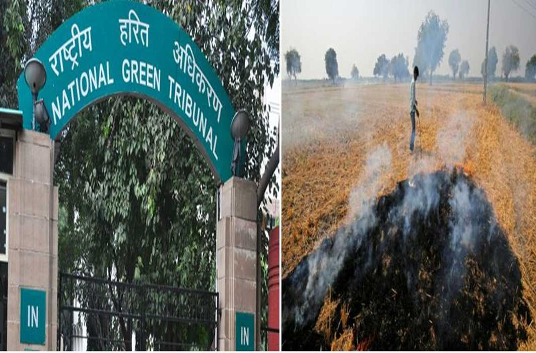 Ngt on the Case of Parali Burning and said You Only Know Lectures