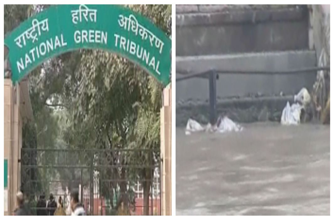 In Haridwar ignored NGT orders