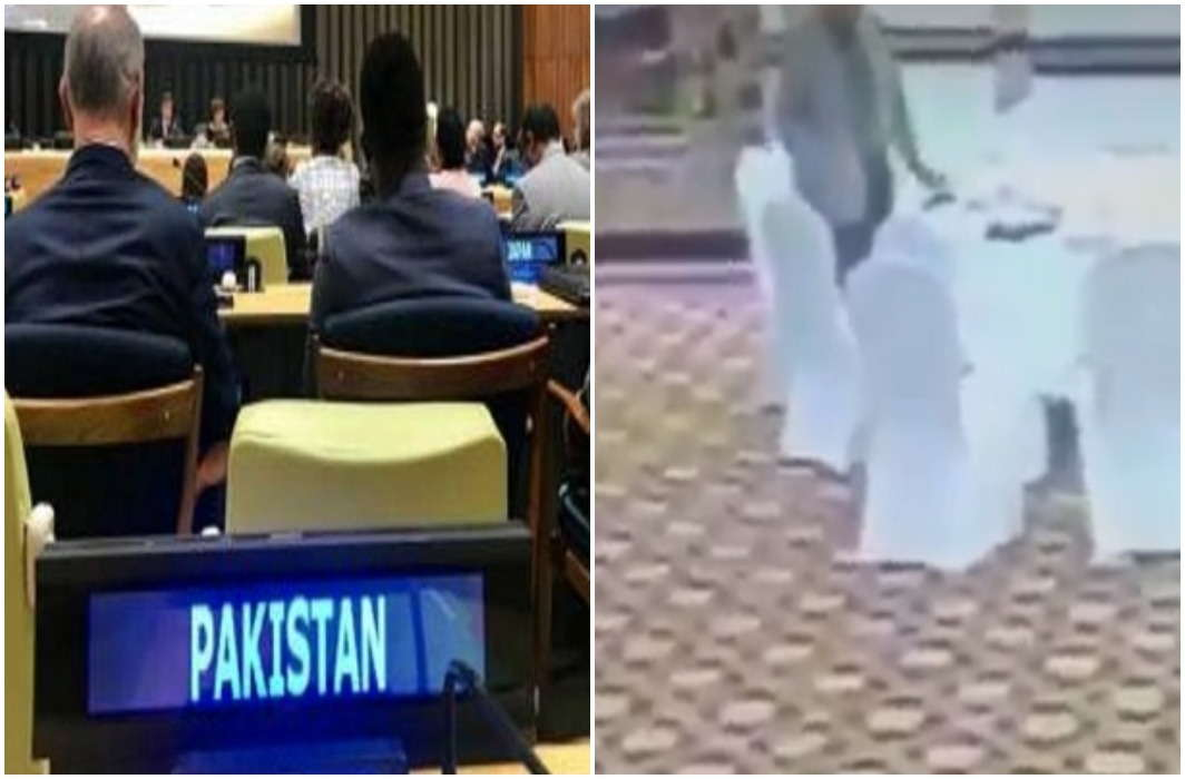 Pakistan shouted on RSS and CM Yogi In the un