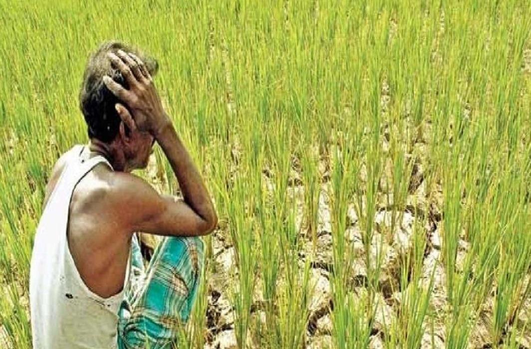 Jharkhands Farmer