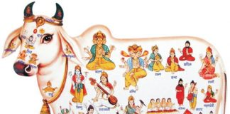 Know the auspicious notification sign of the blessings of Maa Durga