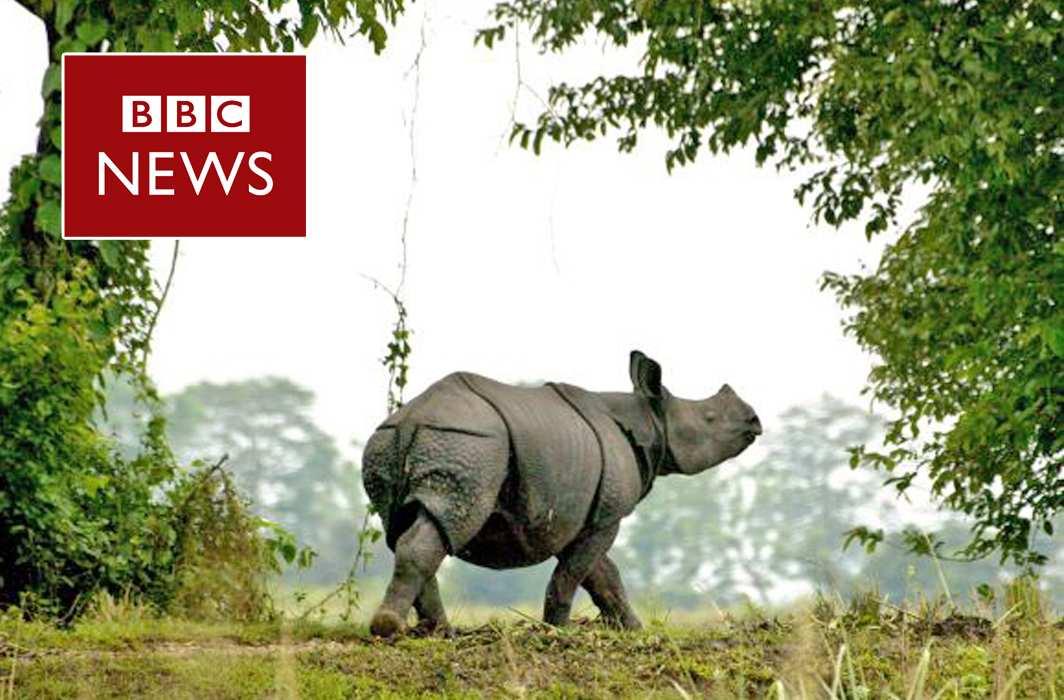 BBC banned